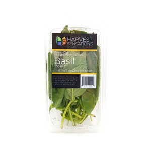 Basil Leaves 28g Approx. Weight