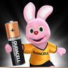 Duracell Plus Power Type AA Alkaline Batteries 8pcs