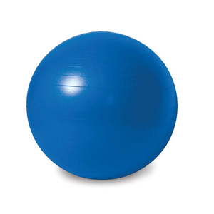 Sports Champion GYM Ball IR97402 65CM  Assorted
