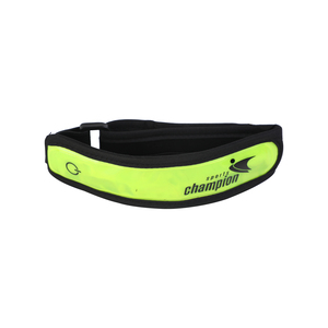 Sports Champion Running Arm Band IR980531