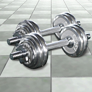 Sports Champion Dumbbell Set SC80116C 30Kg
