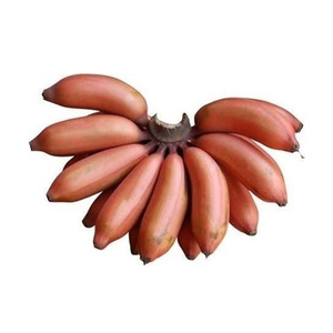 Banana Red Poovan Sri Lanka 500g Approx. Weight