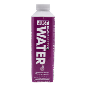 Just Water Organic Blackberry Spring Water 500ml