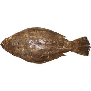 Fresh Dover Sole Fish Big 500g Approx. Weight