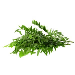 Curry Leaves Oman 75g Approx. Weight