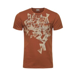 Cortigiani Men's Round Neck T-Shirt Short Sleeve BSR006 Brown