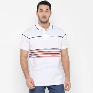 Allen Solly Men's Polo T-Shirt Short Sleeve ASKPWRGFO80004 white