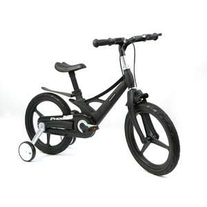 "Skid Fusion Bicycle 16"" SXJ16 Assorted Color"