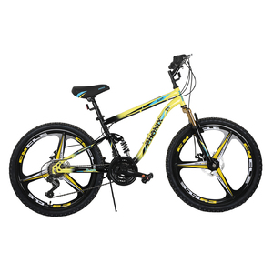 "Phonix Bicycle 20"" ALY1950016"