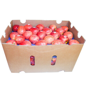 Apple Royal Gala Chile Box 17.5kg Approx. Weight
