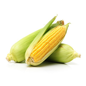Sweet Corn Kuwait 1kg Approx. Weight
