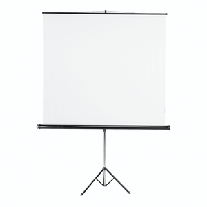 Hama Tripod Projection Screen, 180 x 180 cm, white (18796)