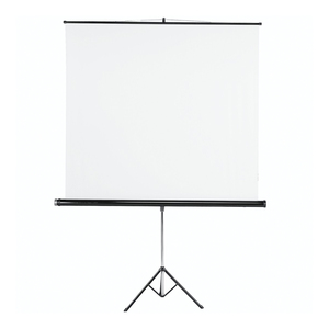 Hama Tripod Projection Screen, 155 x 155 cm, white (18793)