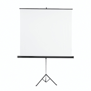 Hama Tripod Projection Screen, 125 x 125, white(18790)