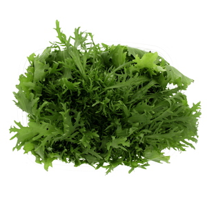 Holland Lettuce Frisee Green 200g Approx. Weight