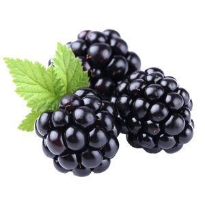 Black Berry USA 125g Approx. Weight