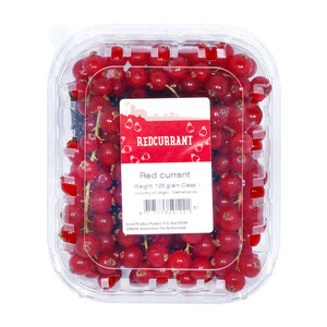 Red Currant Holland 1pkt