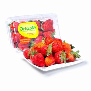 Strawberry 1 Packet