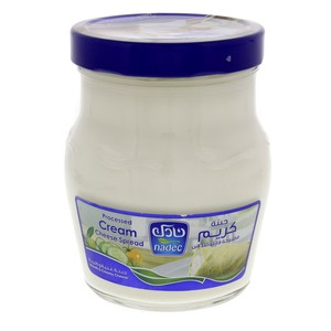 Nadec Processed Cream Cheese Spread 500g