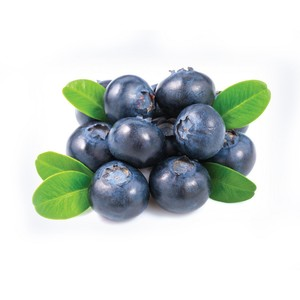 Organic Blueberry 1 Pack