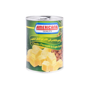 Americana Pineapple Chunks in Syrup 565g