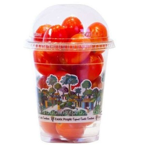Tomato Cherry Shaker Holland 1pkt 250g Approx. Weight