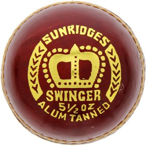SS Cricket Ball Swinger 10030019