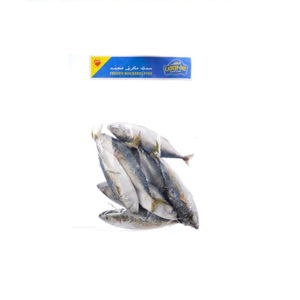 Catch Of the Day Frozen Mackerel Fish 1kg