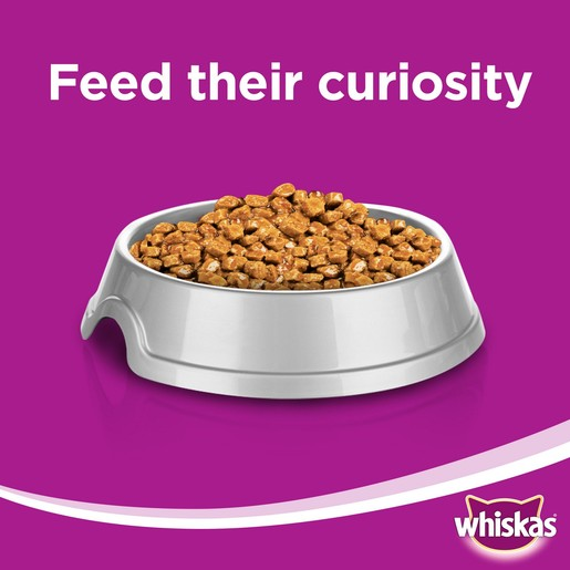 Whiskas® Tender Bites Chicken in Gravy Pouch 85g