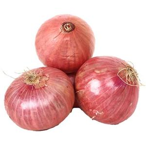Onion India Bag 2kg Approx. Weight