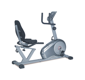 Euro Fitness Magnetic Bike K8508R