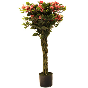 Home Style Bongainvillea Tree With Pot- 105cm