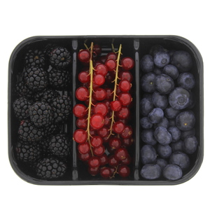 Mix Berries 300g