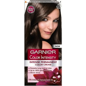 Garnier Color Intensity 4.0 Medium Brown Hair Color 1 Packet