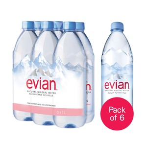 Evian Natural Mineral Water 1Litre