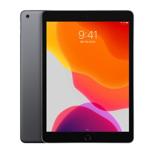 Apple iPad 10.2-Inch ( 2019 ) Wi-Fi 32GB Space Grey