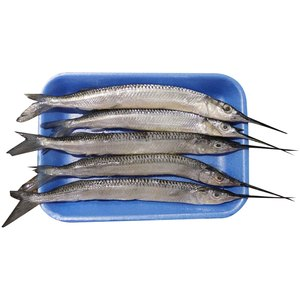 Fresh Needle Fish 500g Approx. Weight