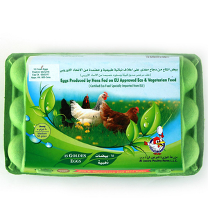 Organic Fed Hen Eggs 15pcs