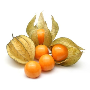 Physalis 1Pkt