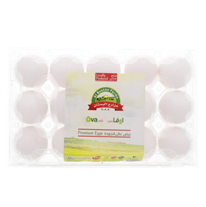 Ova Plus Natural Premium Eggs Large 15pcs