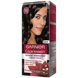 Garnier Color Intensity 2.0 Ebony Black Hair Color 1 Packet