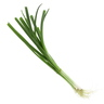 Spring Onion Leaves 1 Packet