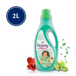 Downy Dream Garden Regular Fabric Softener 2Litre